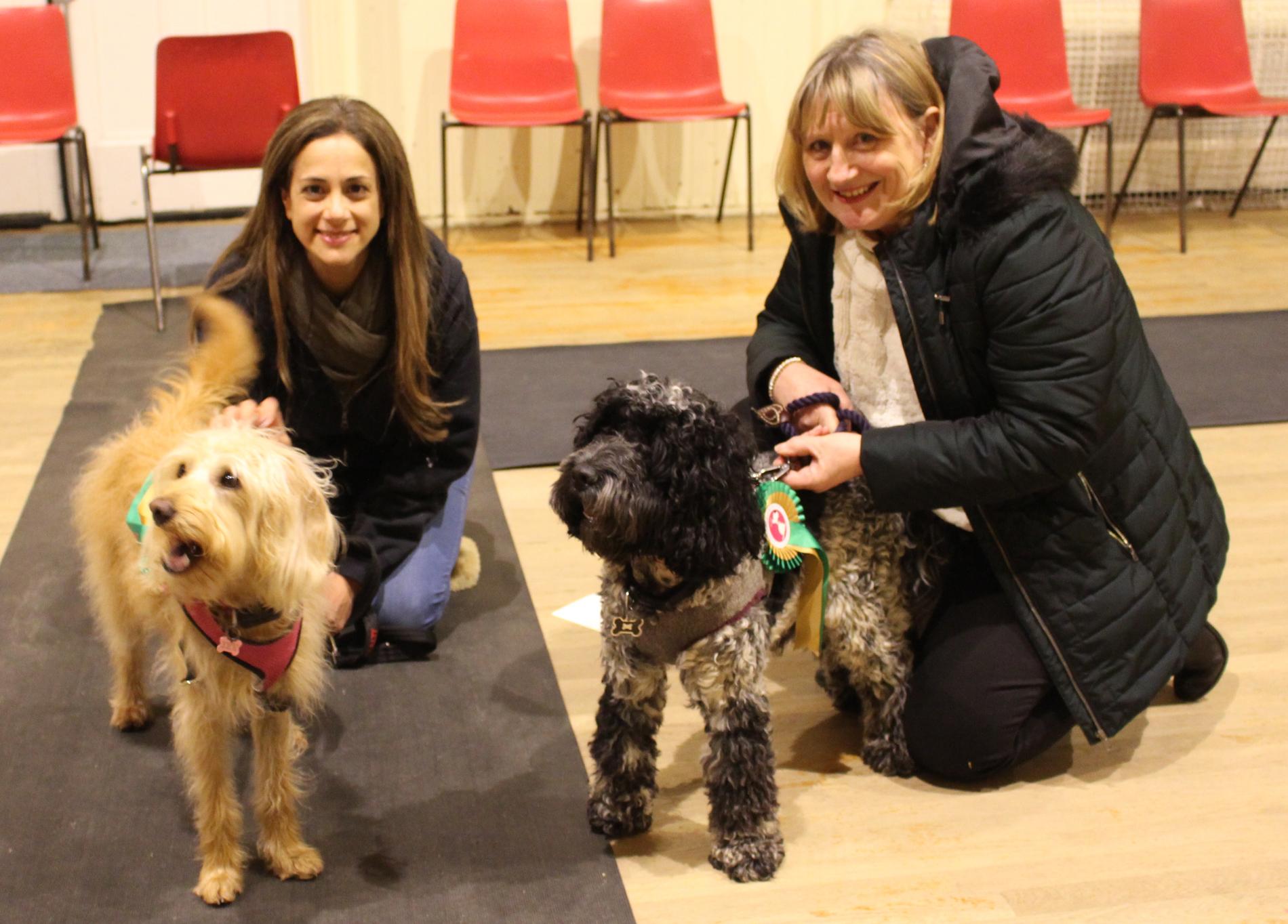 Kennel Club Good Citizen Dog Scheme Silver Award